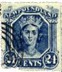Spud_Newfoundland1