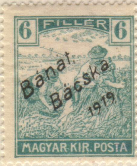 Hungary_Banat_Bacska_6f_Szekula_Forgery
