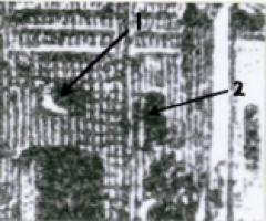 Zarki_1918_3hal_type1