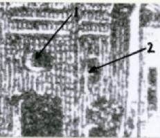Zarki_1918_3hal_type2
